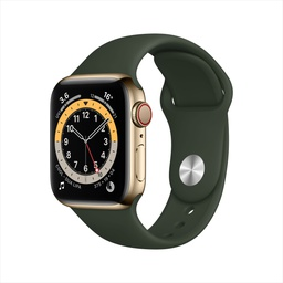 [M02W3VC/A] Apple Watch Series 6 GPS + Cellular, 40mm Gold Stainless Steel Case with Cyprus Green Sport Band